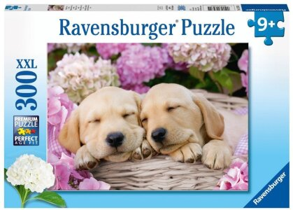 Süße Hunde im Körbchen- Puzzle
