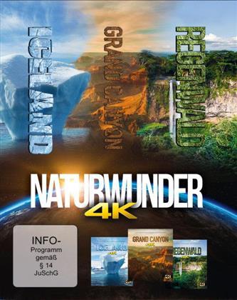 Naturwunder - Iceland / Grand Canyon / Regenwald (Mastered in 4K, 3 Blu-rays)