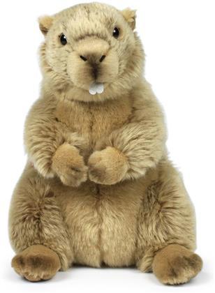 WWF - Murmeltier
