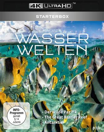 Wasserwelten - Starterbox - Der wilde Pazifik / The Great Barrier Reef / Antarktis (3 4K Ultra HDs)