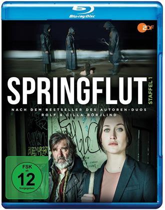 Springflut - Staffel 1 (2 Blu-rays)