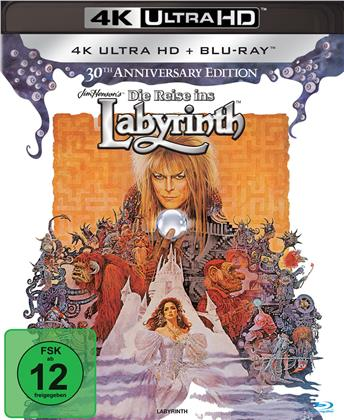 Die Reise ins Labyrinth (1986) (30th Anniversary Edition, 4K Ultra HD + Blu-ray)