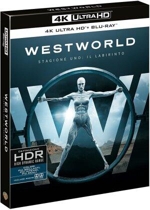 Westworld - Stagione 1 - Il labirinto (3 4K Ultra HDs + 3 Blu-ray)