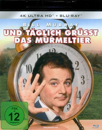 Und täglich grüsst das Murmeltier (1993) (4K Ultra HD + Blu-ray)