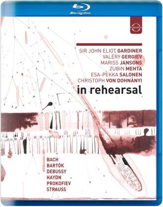 Mariss Jansons, Sir John Eliot Gardiner & Valery Gergiev - In Rehearsal & Performance (Euro Arts)