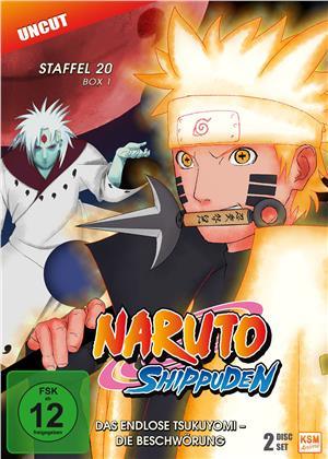 Naruto Shippuden - Staffel 20 Box 1 (Uncut, 2 DVDs)