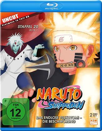 Naruto Shippuden - Staffel 20 Box 1 (Uncut, 2 Blu-rays)