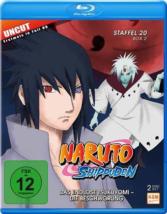 Naruto Shippuden - Staffel 20 Box 2 (Uncut, 2 Blu-rays)