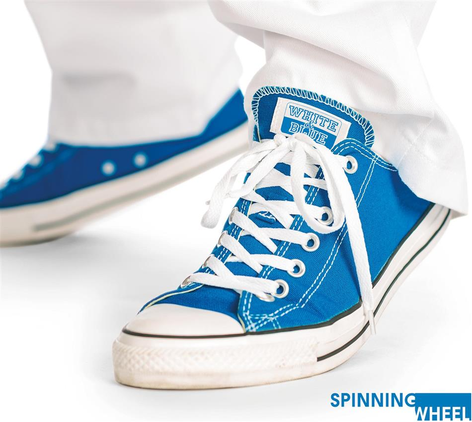 Spinning Wheel - White And Blue