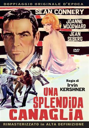 Una splendida canaglia (1966)