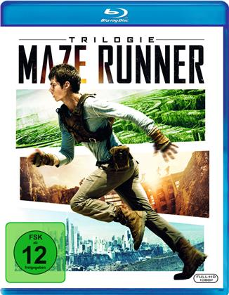 Maze Runner Trilogie (3 Blu-rays)