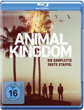 Animal Kingdom - Staffel 1 (2 Blu-rays)