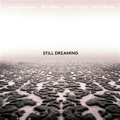 Joshua Redman - Still Dreaming (LP)