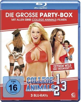 College Animals 1 - 3 (3 Blu-rays)