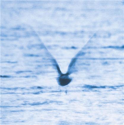 Ryo Fukui - Mellow Dream (LP)