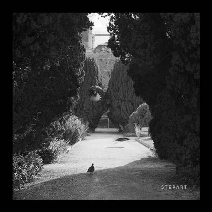 """Stepart - The Curve (Limited Edition, 12"""" Maxi)"""