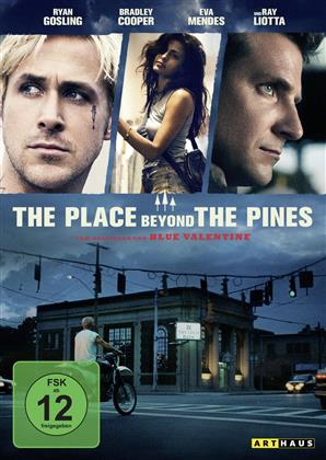 The Place Beyond the Pines (2012) (Arthaus)