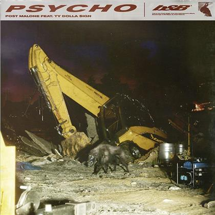 Post Malone & Ty Dolla Sign - Psycho (2 Track)