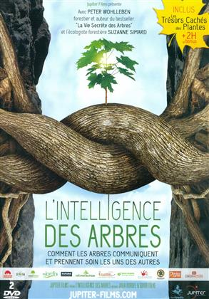 L'intelligence des arbres (2 DVDs)