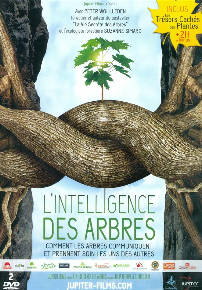 L'intelligence des arbres (2 DVDs)
