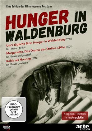 Hunger in Waldenburg (1929) (s/w)