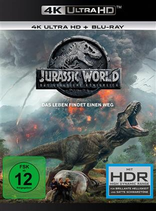 Jurassic World 2 - Das gefallene Königreich (2018) (4K Ultra HD + Blu-ray)