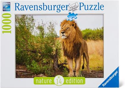 Stolzer Löwe - Nature Edition Puzzle