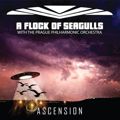 A Flock Of Seagulls - Ascension-Orchestral
