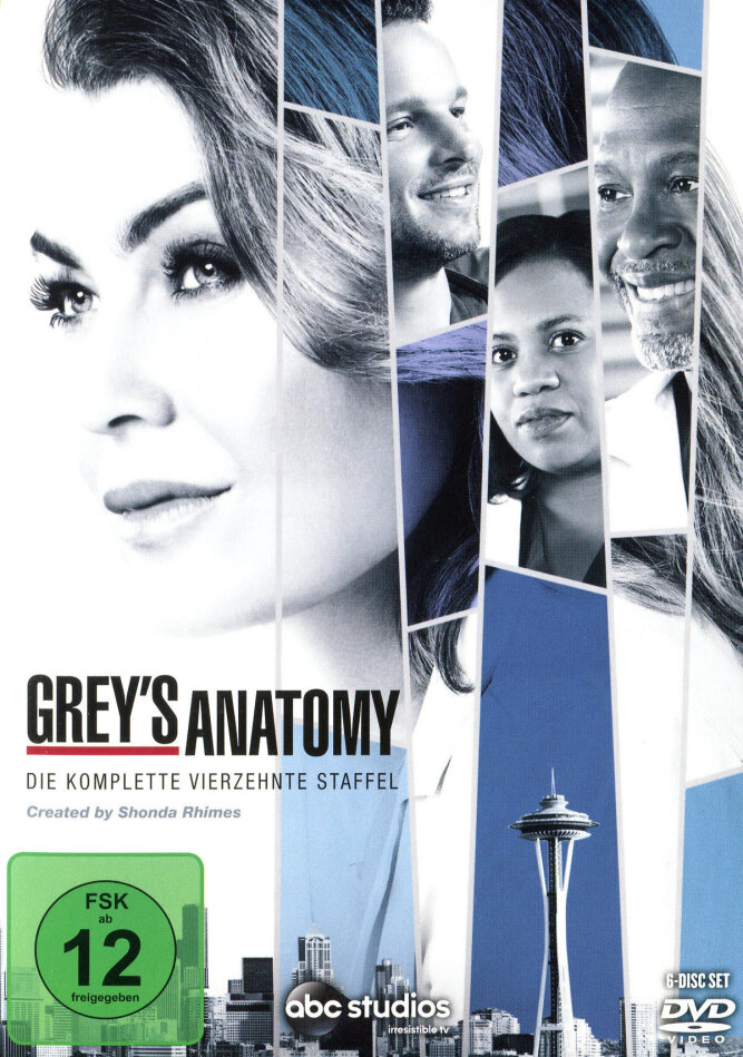 Grey's Anatomy - Staffel 14 (6 DVDs)