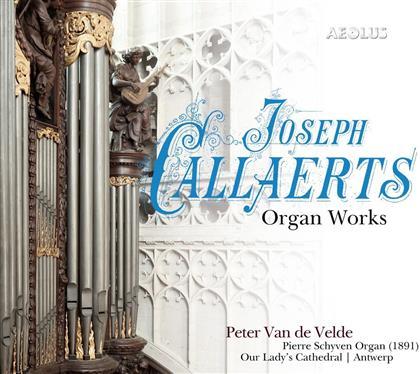 Joseph Callaerts (1838-1901) & Peter van de Velde - Orgelwerke - Pierre Schyven-Orgel Our Lady's Cathedral Antwerpen (SACD)