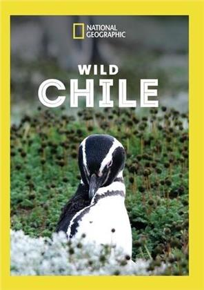National Geographic - Wild Chile