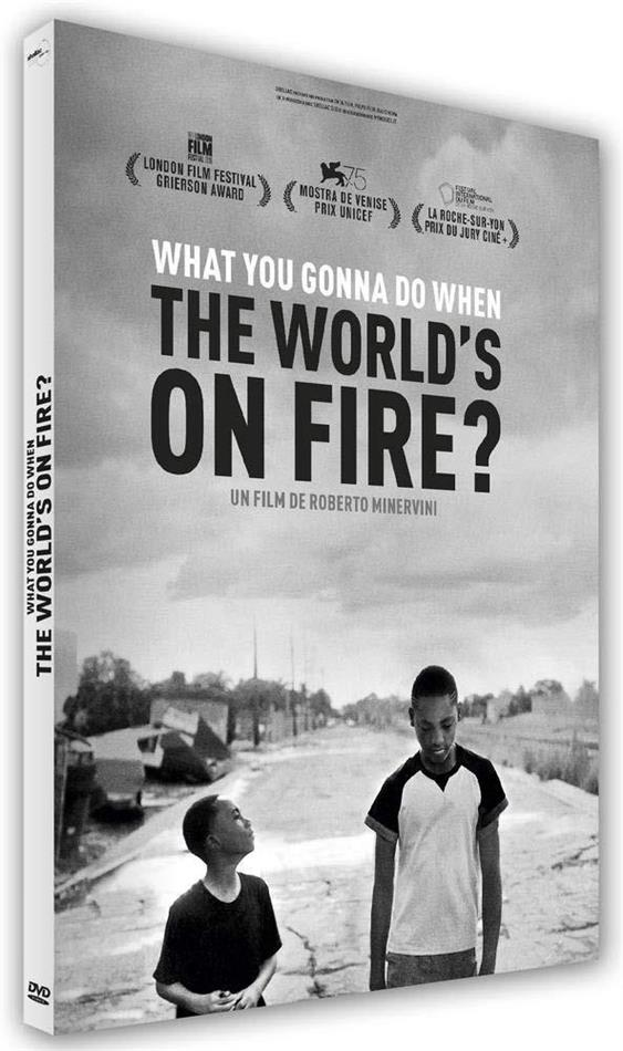 What You Gonna Do When the World's on Fire? (s/w)