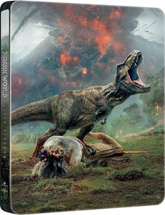 Jurassic World 2 - Il regno distrutto (2018) (Steelbook)