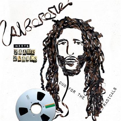 Alborosie & Roots Radics - Alborosie Meets Roots Radics - Dub For Radicals (LP)