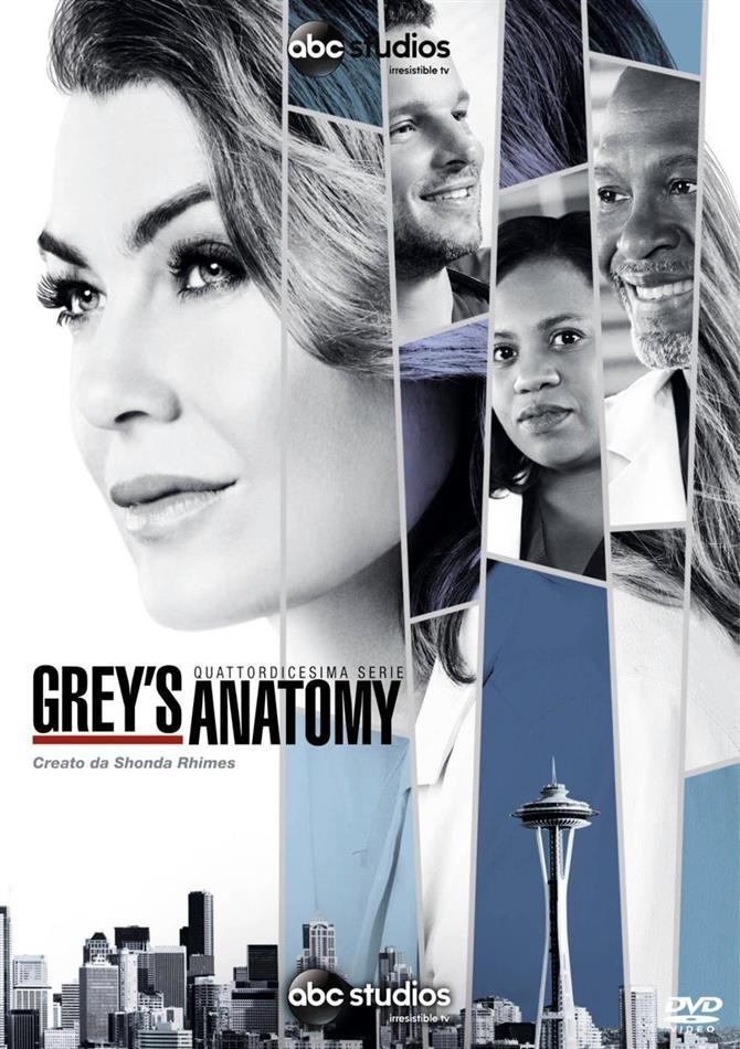Grey's Anatomy - Stagione 14 (6 DVDs)