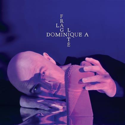 Dominique A - La Fragilite (Deluxe Edition, 2 CDs)