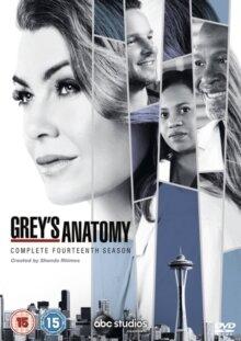 Grey's Anatomy - Season 14