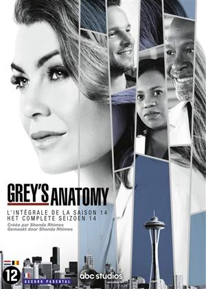 Grey's Anatomy - Saison 14 (6 DVDs)