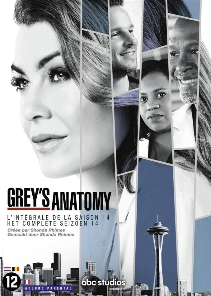 Grey's Anatomy - Saison 14 (6 DVDs)