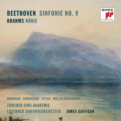 James Gaffigan, Mauro Peter, Luzerner Sinfonieorchester, Ludwig van Beethoven (1770-1827) & Johannes Brahms (1833-1897) - Beethoven: Symphony No. 9 & Brahms: Nänie (2 CDs)