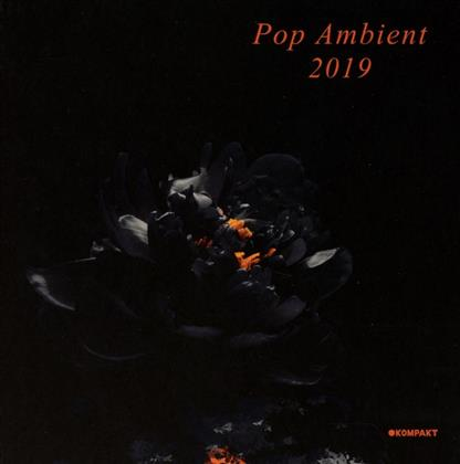 Pop Ambient 2019 (Digipack)