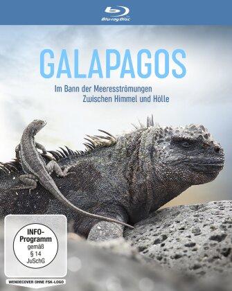 Galapagos - Im Bann der Meeresströmungen / Zwischen Himmel und Hölle
