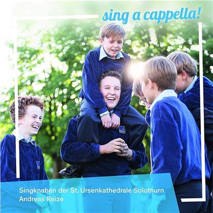 Andreas Reize & Singknaben Der St. Ursenkathedrale Solothurn - Sing A Cappella!