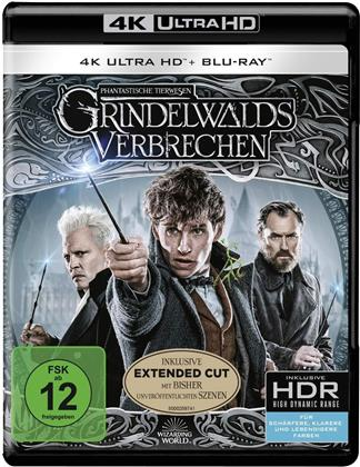 Phantastische Tierwesen 2 - Grindelwalds Verbrechen (2018) (Extended Edition, Cinema Version, 4K Ultra HD + 2 Blu-rays)