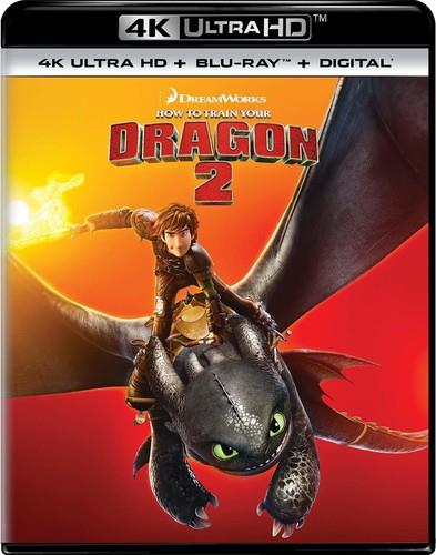 How To Train Your Dragon 2 (2014) (4K Ultra HD + Blu-ray)