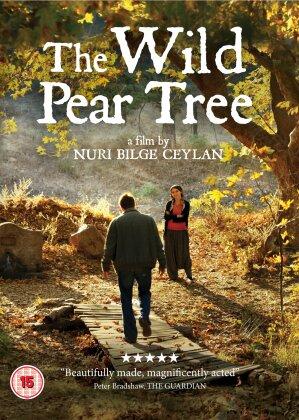 The Wild Pear Tree (2018)