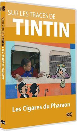 Sur les traces de Tintin - Les cigares du Pharaon