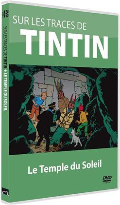 Sur les traces de Tintin - Le Temple du Solei