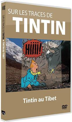 Sur les traces de Tintin - Tintin au Tibet