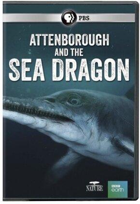 Attenborough and the Sea Dragon (BBC Earth)
